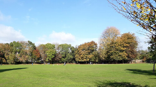 Open green space with trees along Beverley Brook in background